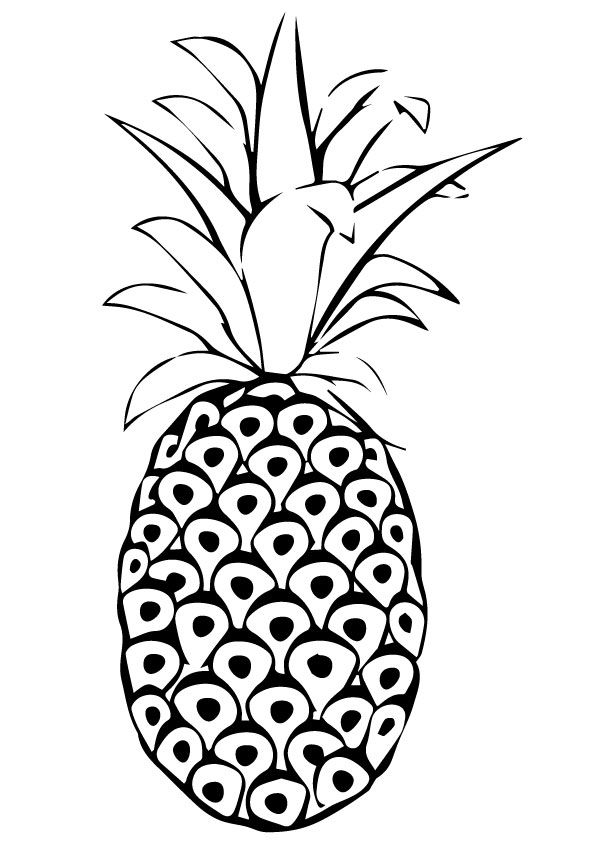 photo about Free Printable Pineapple named No cost Printable Pineapple Coloring Web pages, Pineapple Coloring