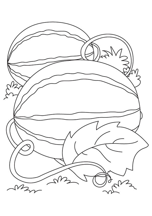 Watering Watermelon coloring pages