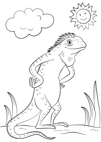 Cartoon Iguana  coloring pages