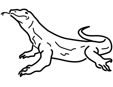 Komodo  coloring pages
