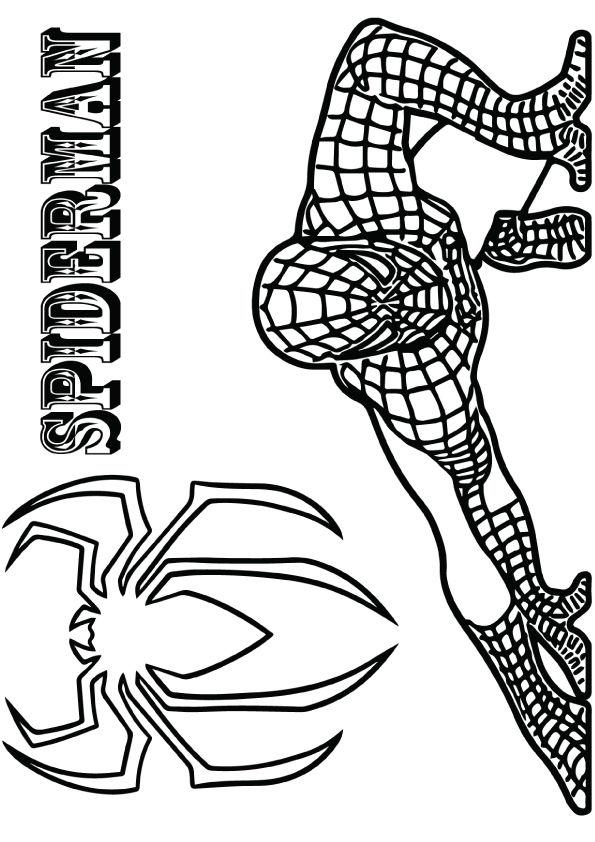 Crouching Spiderman
