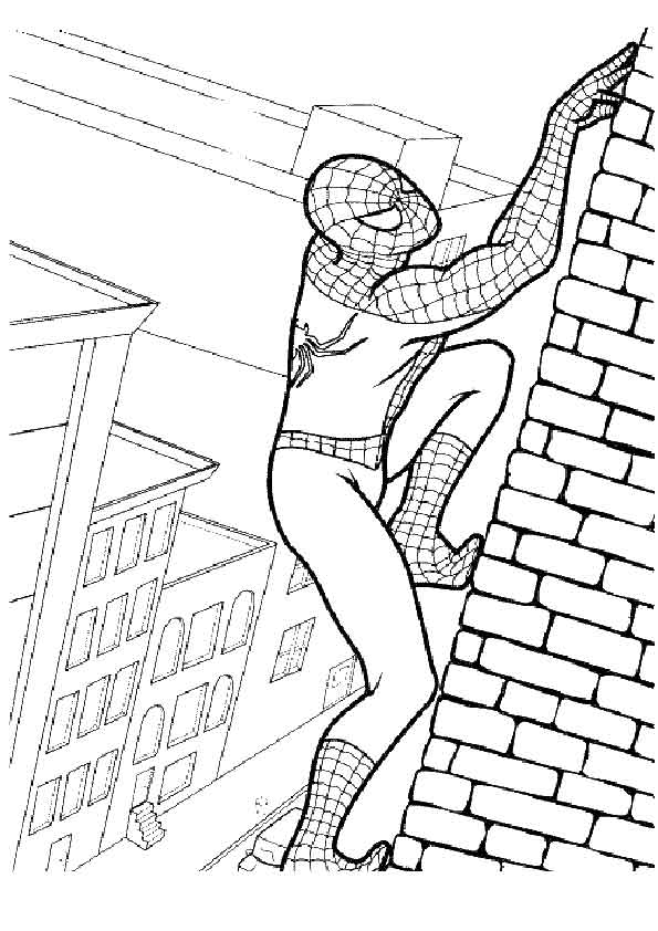 Spiderman Fighter coloring pages