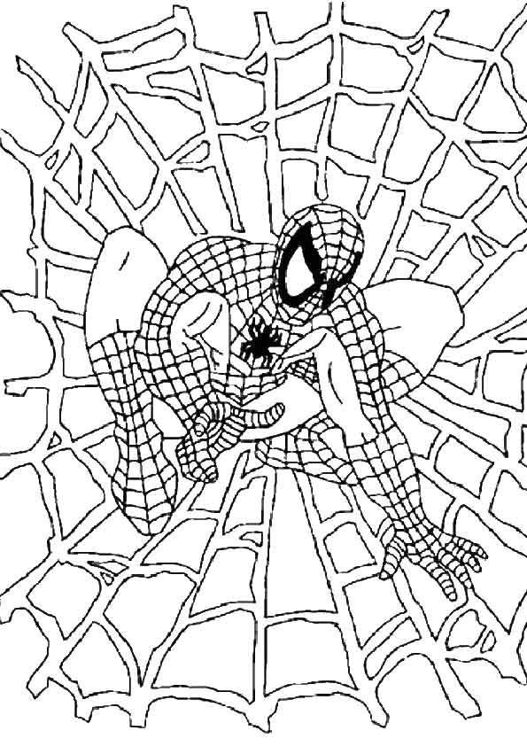 Spiderman Web