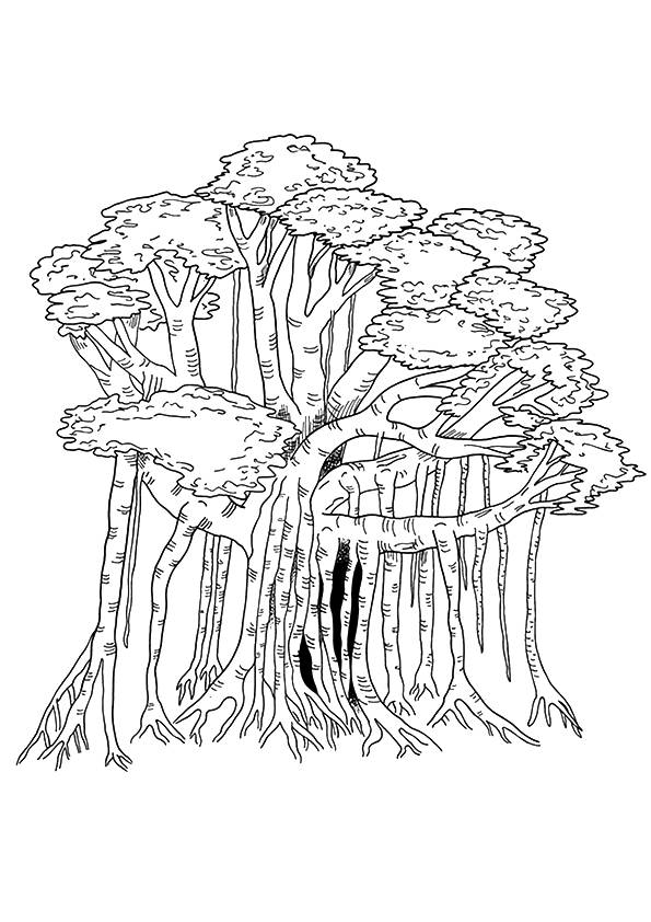 Banyan Tree coloring pages